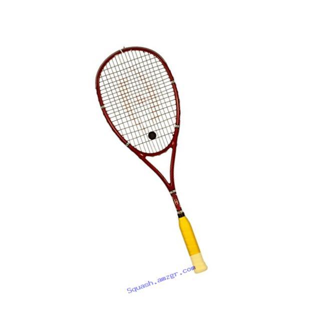 Harrow 65970216 2016 Stealth Squash Racquet Black//Carolina//Grey